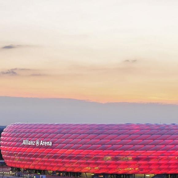 München/ Isar: Allianz-Arena, Schafe (ID: 11544)