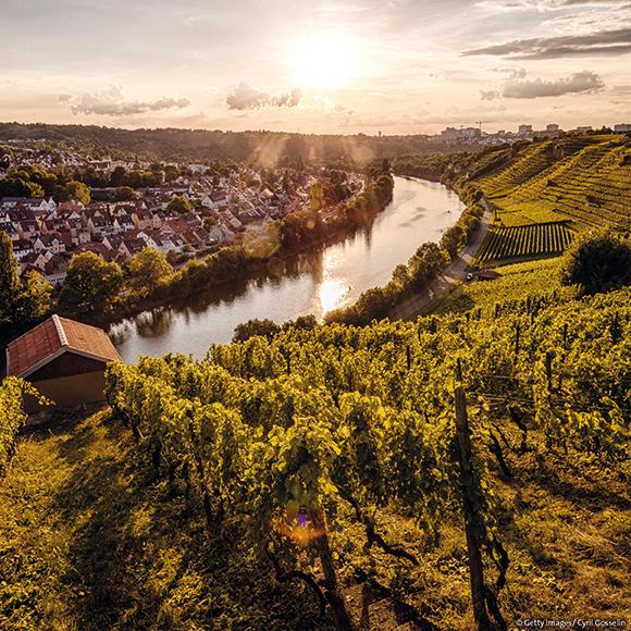 Stuttgart: view on to the river neckar from the vineyards