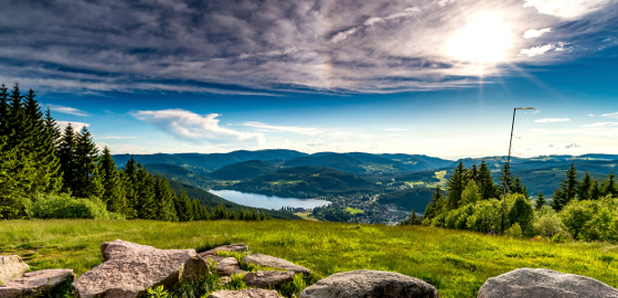 Titisee-Neustadt: Titisee from Hochfirst