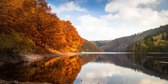 Lago Rur in autunno, Parco Nazionale dell' Eifel
