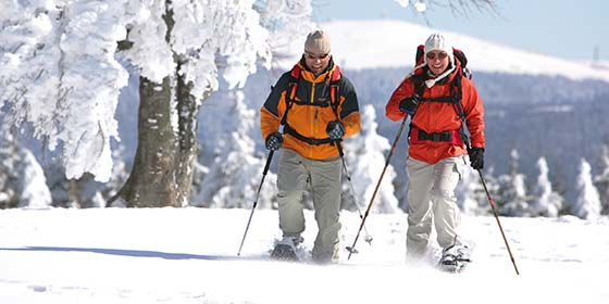 Black Forest: Couple on a snowshoe walk